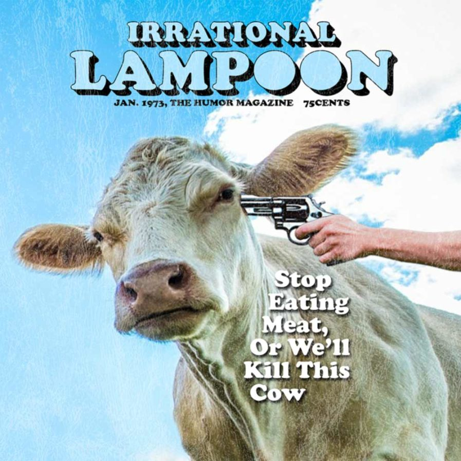 Irrational Lampoon artwork close-up
