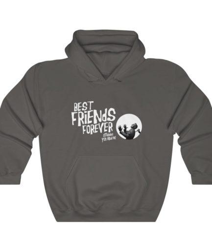 Best Friends Forever Hoodie Asphalt